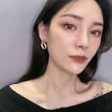 S925银针韩国简约椭圆形气质哑光春夏款个性金属耳钉